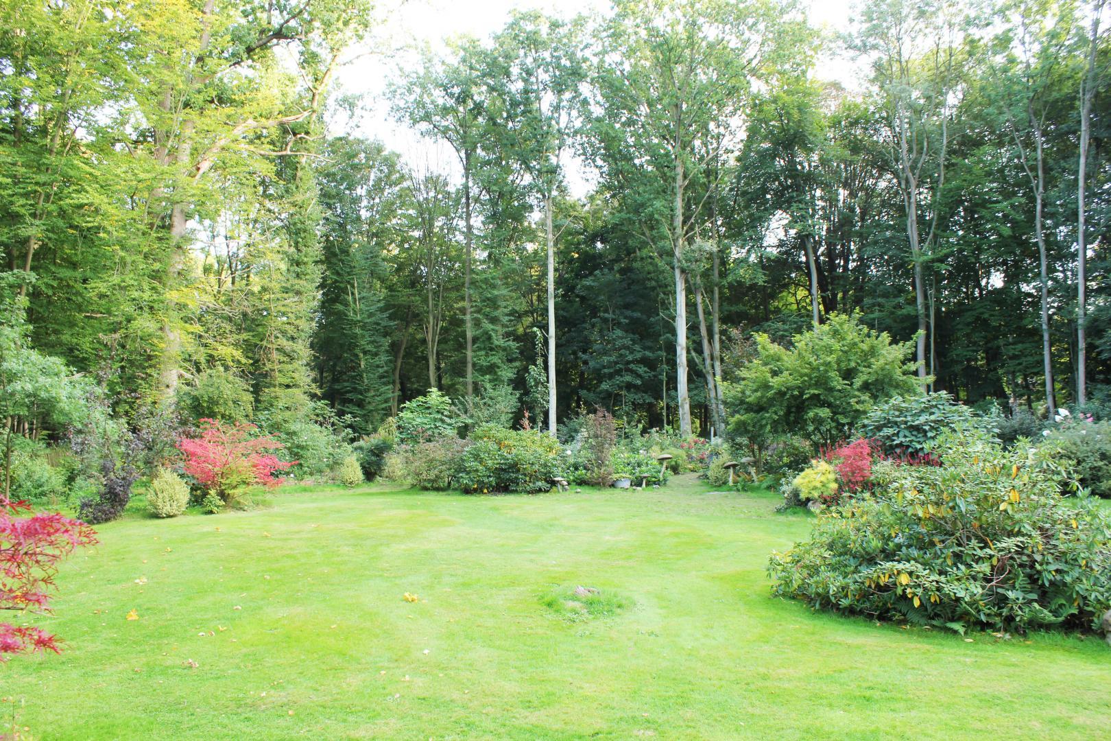 Creation Entretien Et Amenagement De Jardin Vente De